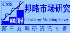 邦略市场  研究公司